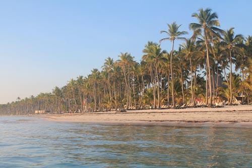 Утро на пляже отеля Barcelo Bavaro Beach