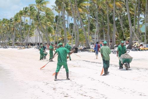 Уборка водорослей на пляже отеля Barcelo Bavaro Beach
