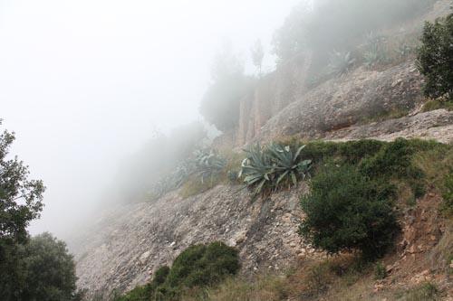 Туман на Монсеррат