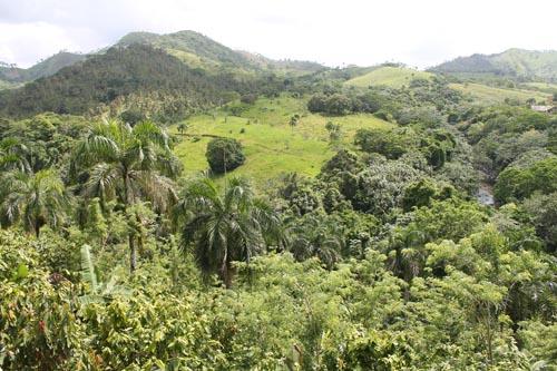 Окрестности ранчо в Доминикане