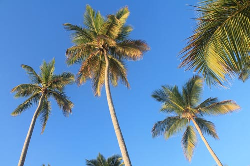Небо Доминиканы