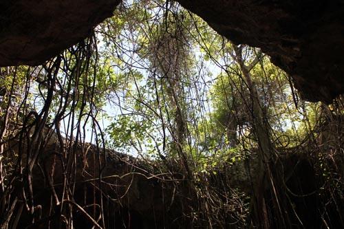 Пещера на экскурсии ВДВ-сафари