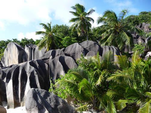 Колорит на Сейшельских островах