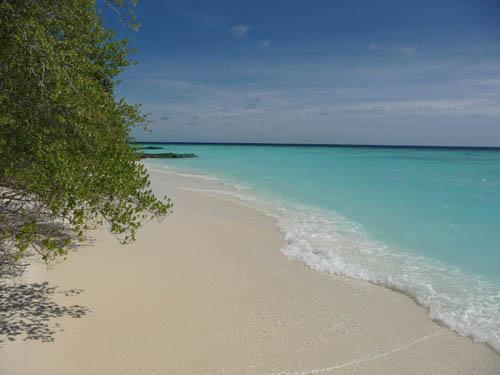 Берег корралового острова