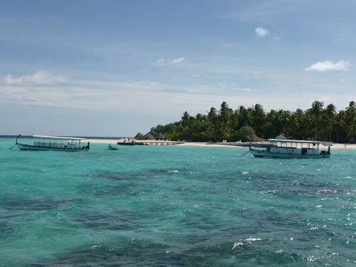 Островки живых корралов