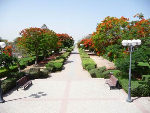 Аль Мамзар парк