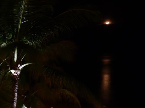 Ночь на Сейшелах
